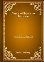 After the Divorce - A Romance