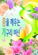 도서 이미지 - 봄을 깨우는 개구리 여신
