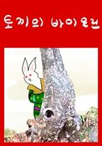 도서 이미지 - 토끼의 바이올린