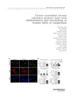도서 이미지 - Cluster-assembled zirconia substrates promote long-term differentiation and functioning of