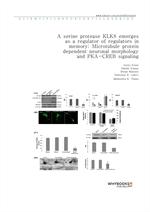 도서 이미지 - A serine protease KLK8 emerges as a regulator of regulators in memory Microtubule protein