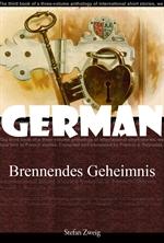 타버린 비밀 (Brennendes Geheimnis) 독일어 문학 시리즈 075