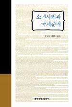 도서 이미지 - 소년사법과 국제준칙