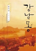 도서 이미지 - 강남몽