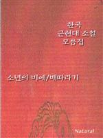 도서 이미지 - 한국 근현대 소설 모음집 - 소년의 비애/배따라기