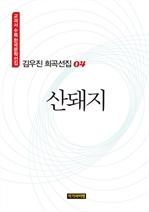 도서 이미지 - 김우진 희곡선집 04: 산돼지