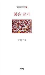 도서 이미지 - 붉은 감기