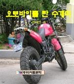 도서 이미지 - 오토바이를 탄 수개미