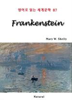 도서 이미지 - Frankenstein