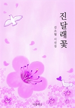 도서 이미지 - 진달래꽃 (김소월 시선집)