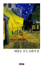 도서 이미지 - 태양을 삼킨 오렌지 달