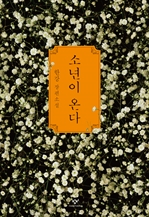 도서 이미지 - 소년이 온다 : 한강 장편소설