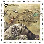 도서 이미지 - [손쉽게 배우는 원리과학52] 갯벌에 사는 동물