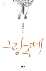 도서 이미지 - 그랑 주떼 : 김혜나 소설