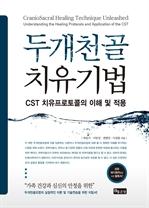 도서 이미지 - 두개천골 치유기법 - CST 치유프로토콜의 이해 및 적용