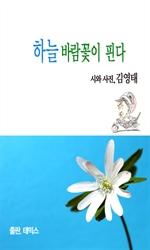 도서 이미지 - [오디오북] 하늘 바람꽃이 핀다