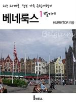 도서 이미지 - 2년 20개국, 정보 가득 유럽여행기 - 베네룩스 1 (벨기에)