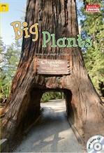 도서 이미지 - Big Plants