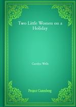 도서 이미지 - Two Little Women on a Holiday