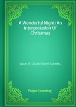 도서 이미지 - A Wonderful Night; An Interpretation Of Christmas