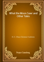 도서 이미지 - What the Moon Saw: and Other Tales