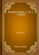 도서 이미지 - Margaret Capel, v. 3 of 3 - A Novel