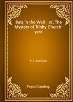 도서 이미지 - Bats in the Wall - or, The Mystery of Trinity Church-yard
