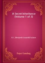 도서 이미지 - A Secret Inheritance (Volume 1 of 3)