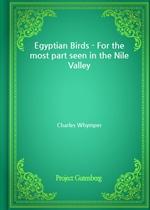 도서 이미지 - Egyptian Birds - For the most part seen in the Nile Valley