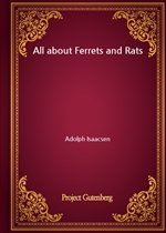 도서 이미지 - All about Ferrets and Rats