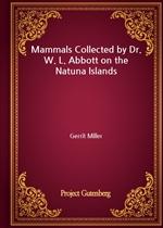 도서 이미지 - Mammals Collected by Dr. W. L. Abbott on the Natuna Islands