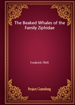 도서 이미지 - The Beaked Whales of the Family Ziphidae