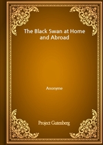 도서 이미지 - The Black Swan at Home and Abroad