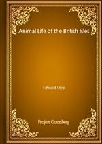 도서 이미지 - Animal Life of the British Isles