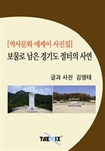 도서 이미지 - [역사문화 에세이 사진집] 보물로 남은 경기도 절터의 사연