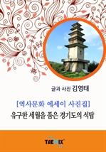 도서 이미지 - [역사문화 에세이 사진집] 유구한 세월을 품은 경기도의 석탑