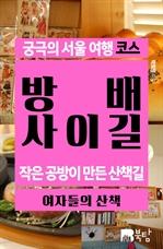 도서 이미지 - 궁극의 서울 여행 코스 방배사이길
