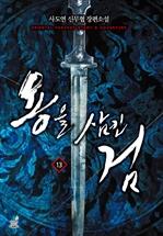 도서 이미지 - 용을 삼킨 검