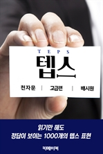 도서 이미지 - 텝스 천자문 [고급]
