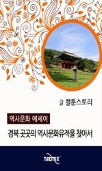 도서 이미지 - [오디오북] 경북 곳곳의 역사문화유적을 찾아서
