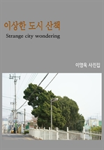 도서 이미지 - 이상한 도시 산책