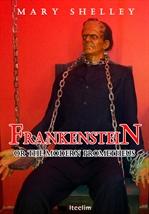도서 이미지 - 프랑켄슈타인 Frankenstein (영어 원서 읽기)