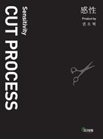 도서 이미지 - 感性 CUT PROCESS