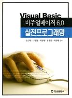 도서 이미지 - 비주얼베이직 6.0 실전프로그래밍