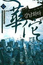 도서 이미지 - 강남화타