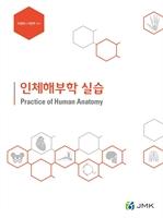 도서 이미지 - 인체해부학 실습 (이영희, 이현주)