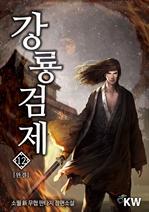 도서 이미지 - 강룡검제