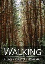 도서 이미지 - 산책(Walking)