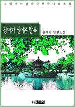 도서 이미지 - 장마가 실어온 발복 - 윤백남 단편소설