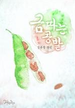 도서 이미지 - 금따는 콩밭